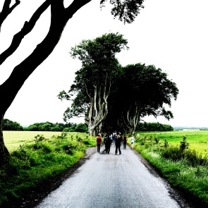 Entering the Dark Hedges. These intertwined beech trees were planted in the 18th-century. Now representing the King's Road in GOT!