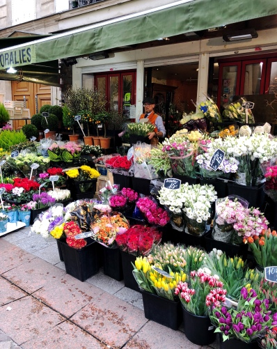The beauty of flowers in springtime